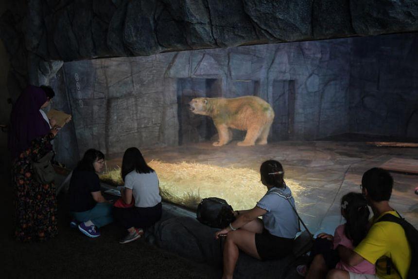 Inuka the polar bear is seen at his enclosure on April 12, 2018.
