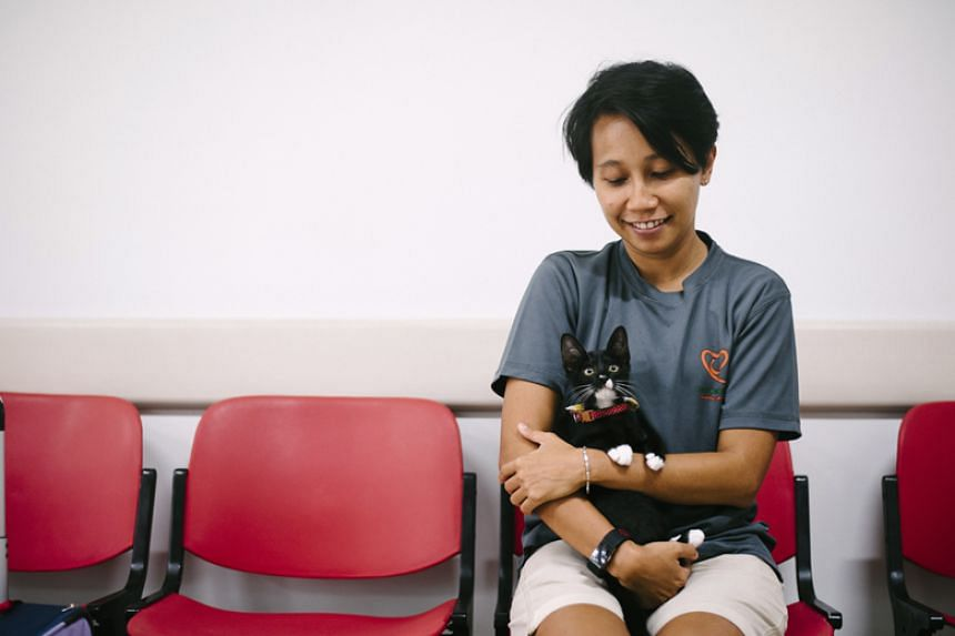 Ms Camellia Abd Gani, a volunteer with Love Kuching Project with four-month-old kitten Russ.