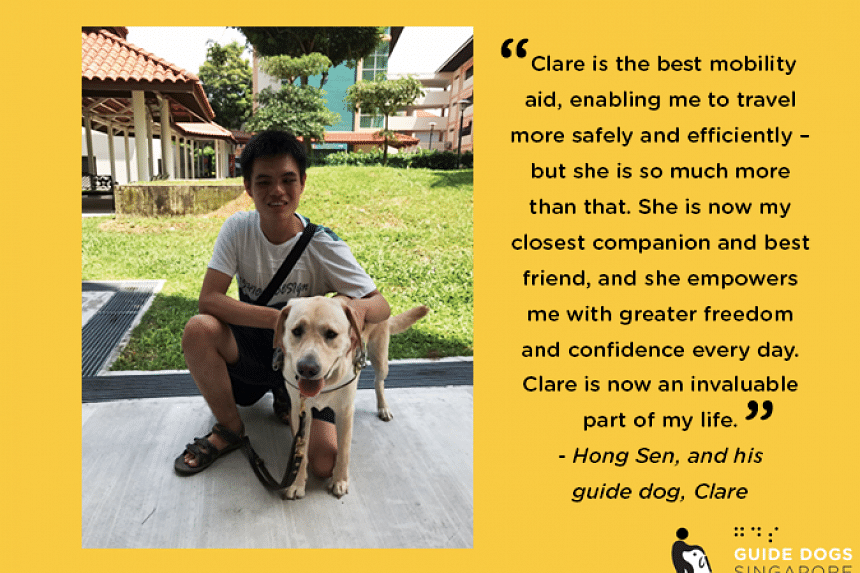 Last year, Guide Dogs Singapore paired its sixth guide dog-handler team, Mr Chia Hong Sen and Labrador retriever Clare.