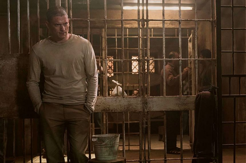 In Season 5, Michael Scofield (played by Wentworth Miller, above is in a Yemeni prison and it falls to his brother, Lincoln Burrows (Dominic Purcell), to break him out.