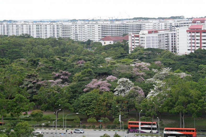 A study has found that, on average, $11,200 of a flat's price could be attributed to green spaces within 1.6km.