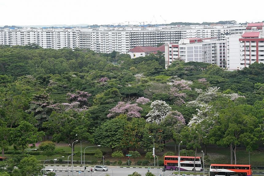 A study has found that the presence of green spaces could have accounted for an estimated $179 million in value of all homes sold during the period between April 2013 and April 2014. This positive effect came almost entirely from managed vegetation s