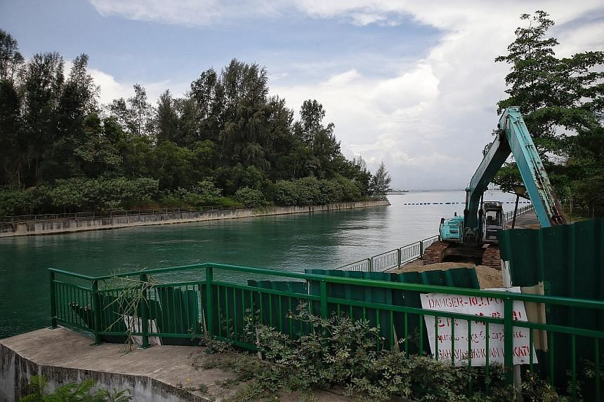The site of the proposed sea burial facility is across the canal from where the excavator is and is near Tanah Merah Ferry Terminal. The area is covered by dense undergrowth and the coastline there is also not planned for recreational purposes.