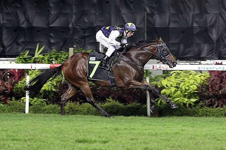 Waialae springing a big surprise by leading throughout in the $85,000 Restricted Terms event over 1,400m on turf, with jockey Craig Grylls astride, in Race 2 at Kranji last night.