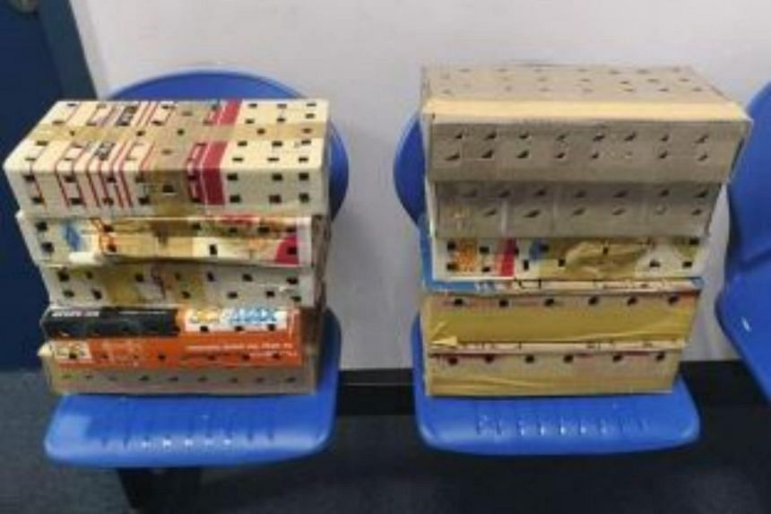 The birds were found when the Malaysian-registered tour bus was searched by ICA officers, inside boxes concealed in a compartment between the driver and the front right tyre.
