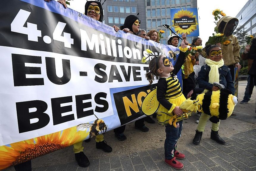 Activists at a rally in front of the European Commission in Brussels yesterday calling upon EU states to protect bees by voting for a full ban on bee-killing pesticides.