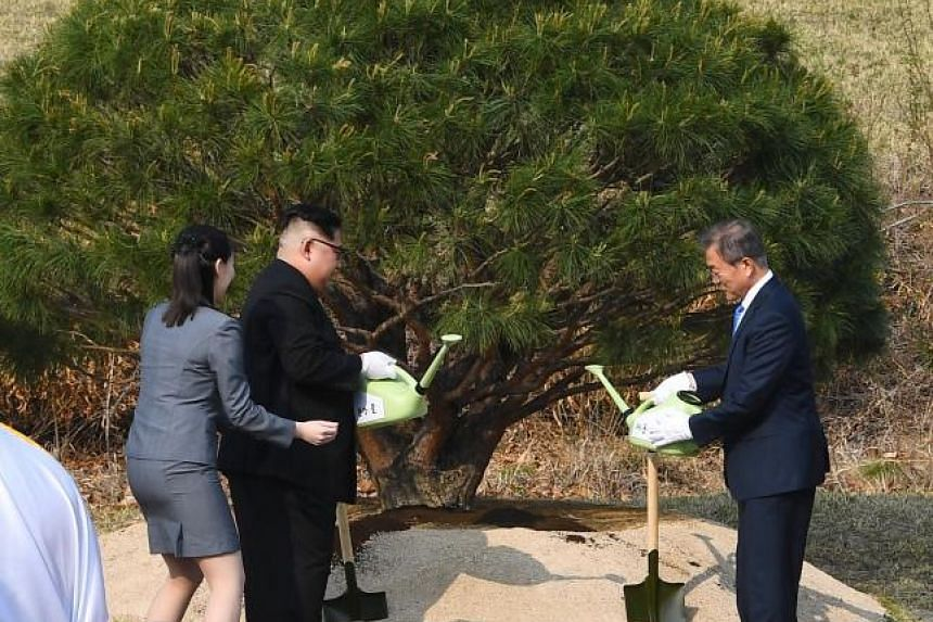 Kim Yo Jong assists North Korean leader Kim Jong Un as he plants a commemorative tree at the Joint Security Area (JSA) on the Demilitarized Zone (DMZ) with  South Korean President Moon Jae In in the border village of Panmunjom in Paju, South Korea, o