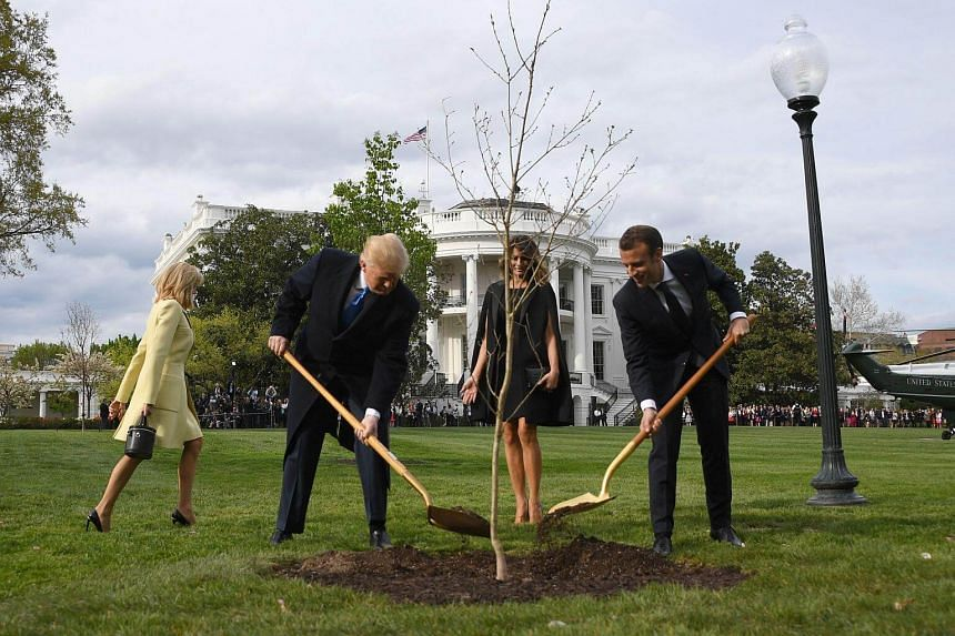 US President Donald Trump and First Lady Melania Trump participate in a tree planting ceremony with French President Emmanuel Macron and his wife Brigitte Macron on the South Lawn of the White House in Washington, on April 23, 2018.