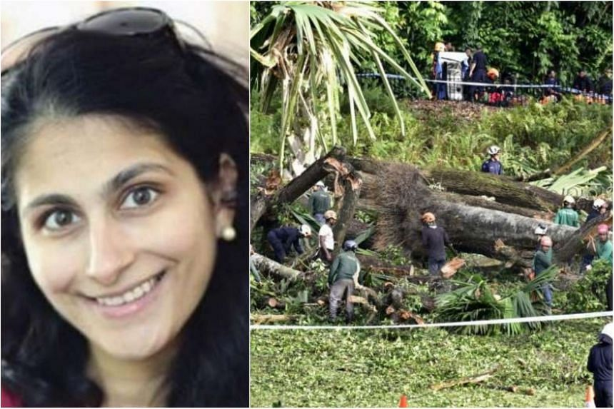 Radhika Angara was killed after a 40m-tall heritage tree fell onto her at the Singapore Botanic Gardens on Feb 11, 2017.
