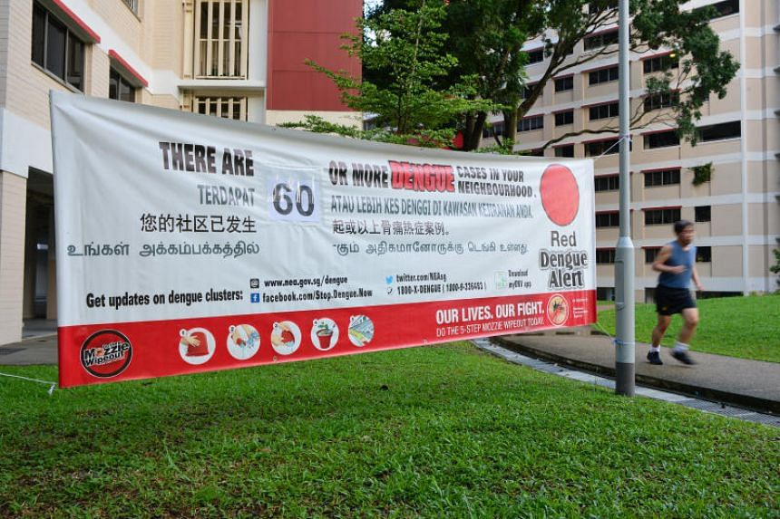 MOH and NEA said 60 dengue cases have been reported in the largest dengue cluster so far this year at Jurong West Streets 91 and 92.