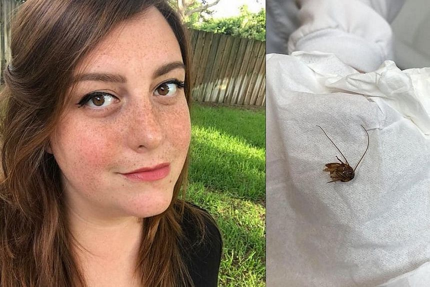 Ms Katie Holley said a cockroach had crawled into her ear while she was sleeping. She does not have any permanent ear damage.