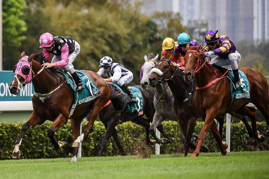 Horse racing is something like a religion in Hong Kong, whose citizens bet more than anyone else on Earth.