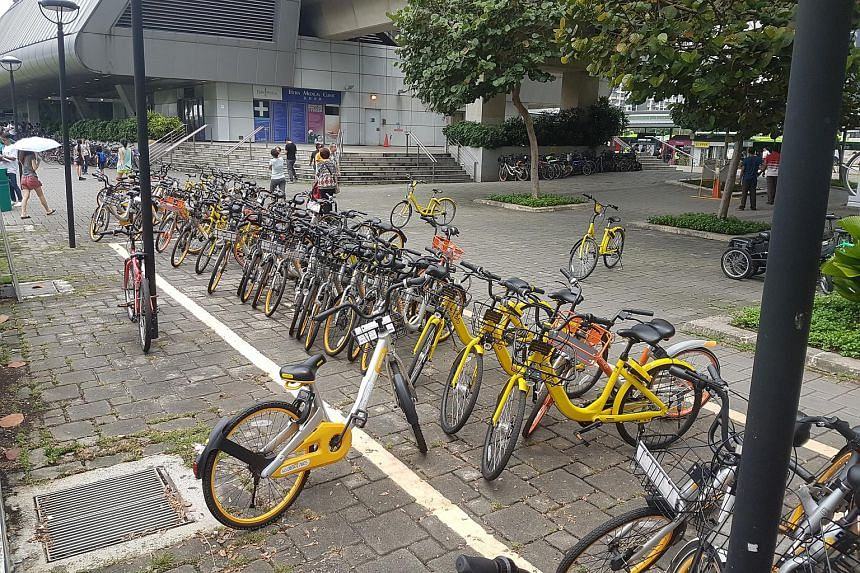 Shared bicycles parked at and around designated bicycle parking zones outside Punggol MRT station.