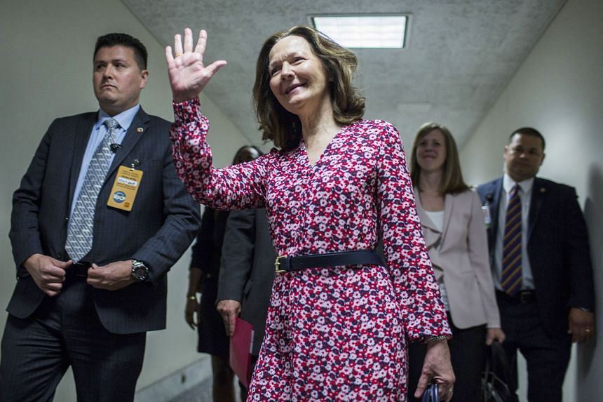 Ms Gina Haspel spent 33 years at the Central Intelligence Agency - much of that time undercover - and received wide praise from professionals, including several former intelligence chiefs.