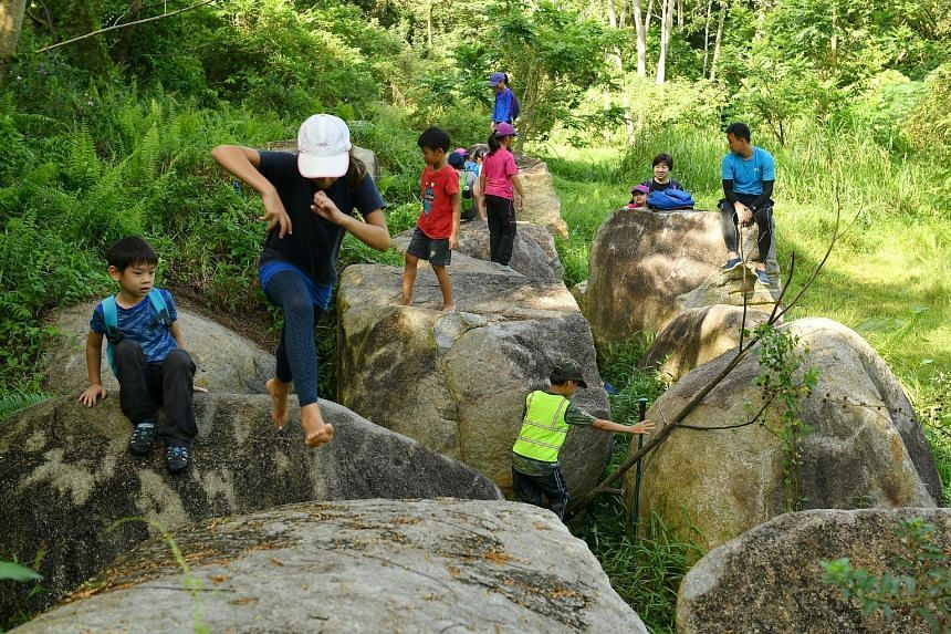 """Children clambering over big rocks in Forest School Singapore's """"Boulder Playground"""" yesterday. The school near Rifle Range Nature Park runs regular programmes for children aged three to 12 where they are taken into the forest nearby and allowed to g"""