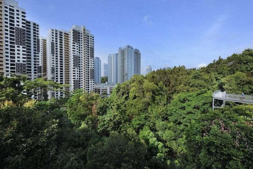 When completed, Tengah will grow to about 700ha, which is roughly equivalent to Bishan in size, Mr Lawrence Wong added.
