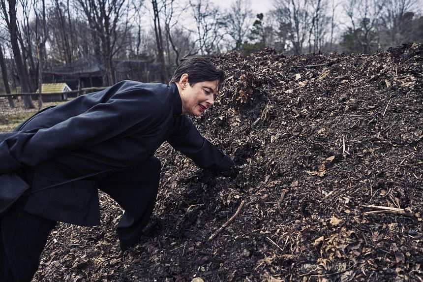 An 11.3ha tract in Bellport, New York, is where Isabella Rossellini rears chickens (left) and leads farm tours, where she encourages visitors to plunge their fists into a compost heap (below).