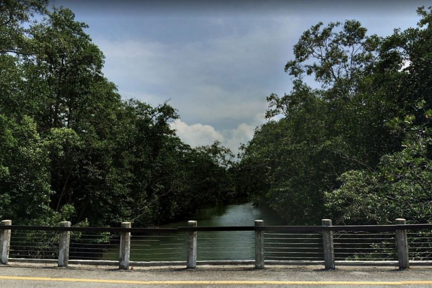 Sungei Tampines flows through parts of Tampines and Pasir Ris before draining into the sea.