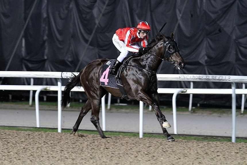 Nova Vocal making it a one-horse affair in Race 3 at Kranji last night. It was his second success in just three starts, with just a nose behind his conqueror in his other outing.