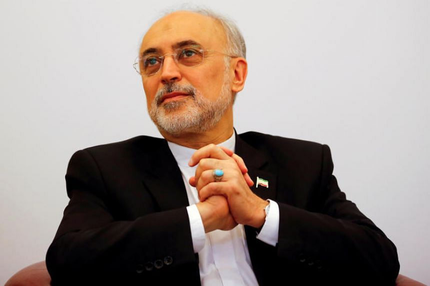 Head of the Iranian Atomic Energy Organization Ali Akbar Salehi attends a lecture in Vienna on Sept 28, 2016.