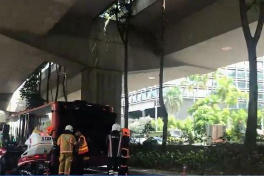 A video of the SBS Transit bus posted by Lianhe Zaobao shows the bus on the rightmost lane in Telok Blangah Road.