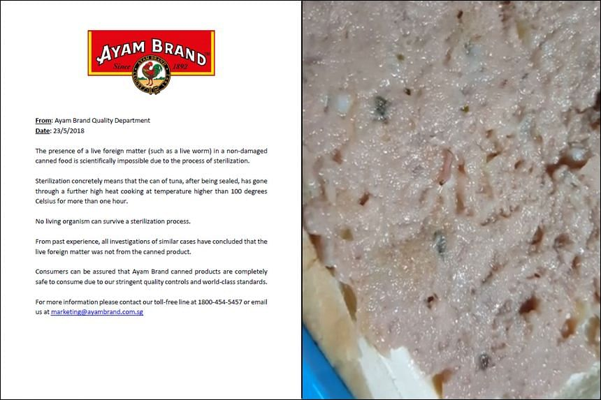 Ayam Brand's statement comes after a four-second video of a single maggot wriggling in tuna meat was posted on AVA's Facebook page by a netizen.