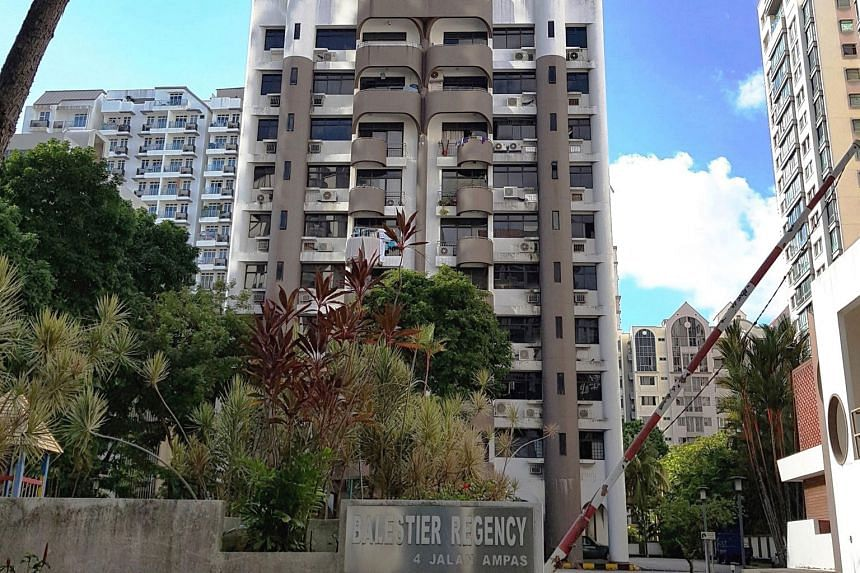 Balestier Regency's 61,952 sq ft freehold residential site has a plot ratio of 2.8, and an allowable height of up to 36 storeys. The maximum allowable gross floor area of 173,409 sq ft could yield about 230 units.