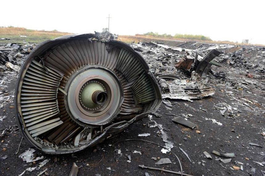 Part of Malaysia Airlines Flight MH17 at the crash site in the village of Hrabove (Grabovo), some 80km east of Donetsk, on Sept 9, 2014.