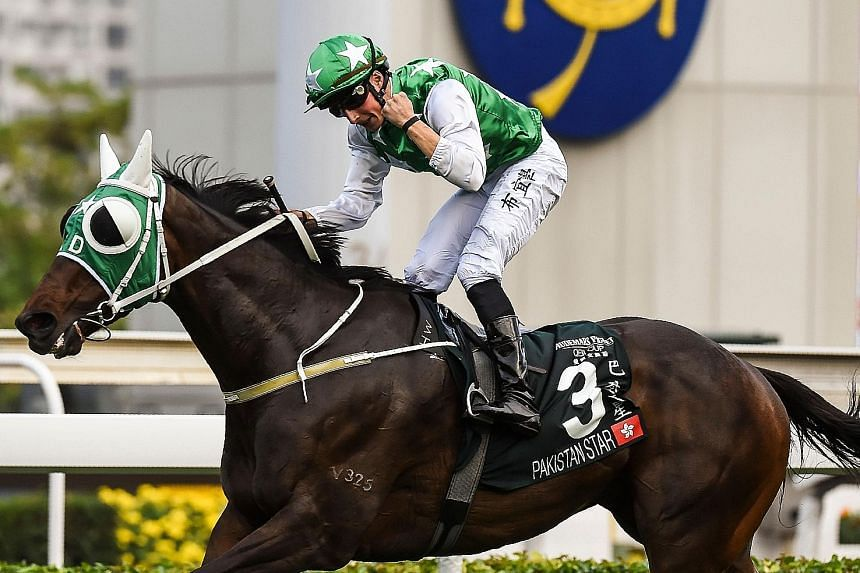 Queen Elizabeth II Cup winner Pakistan Star is at the peak of his racing career and looks poised to add tomorrow's Group 1 Standard Chartered Champions & Chater Cup to his victory list.