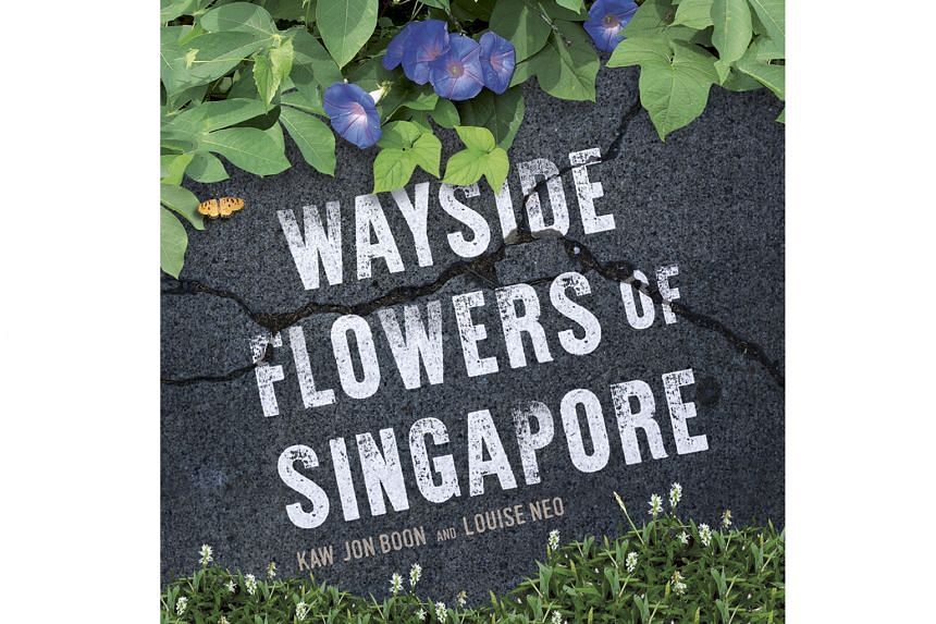 WAYSIDE FLOWERS OF SINGAPORE By Kaw Jon Boon and Louise Neo Straits Times Press