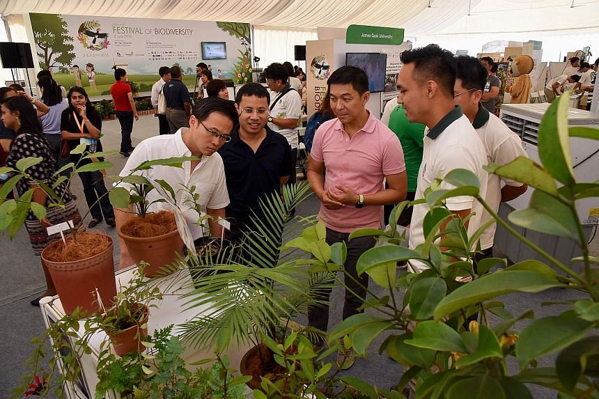 Foreground, from left: Mayor for North East CDC Desmond Choo, Minister for Social and Family Development and Second Minister for National Development Desmond Lee, and Speaker of Parliament Tan Chuan-Jin visiting one of the booths at the Festival of B