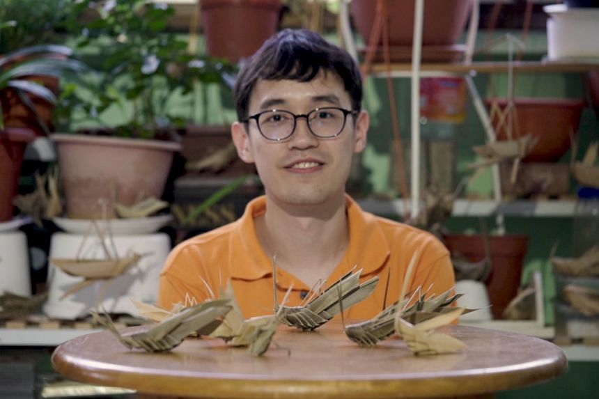 Since 2009, Mr Tan Ming Kai has discovered over 60 species of orthopterans. Orthopteran is a group of insects that includes grasshoppers, crickets and katydids.