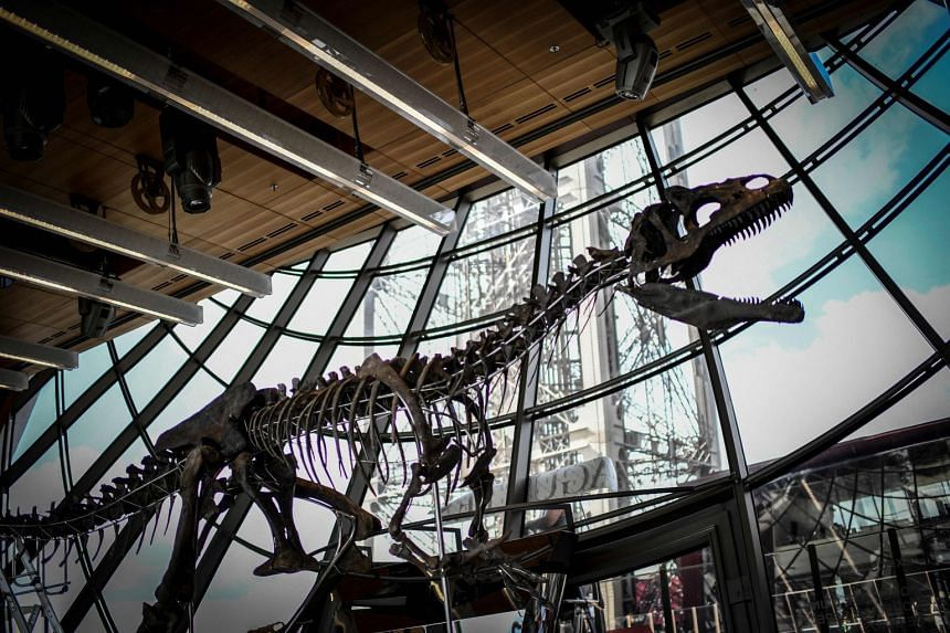 A skeleton of an undeterminate carnivorous dinosaur on display on the first floor of the Eiffel Tower in Paris, France, on June 2, 2018.