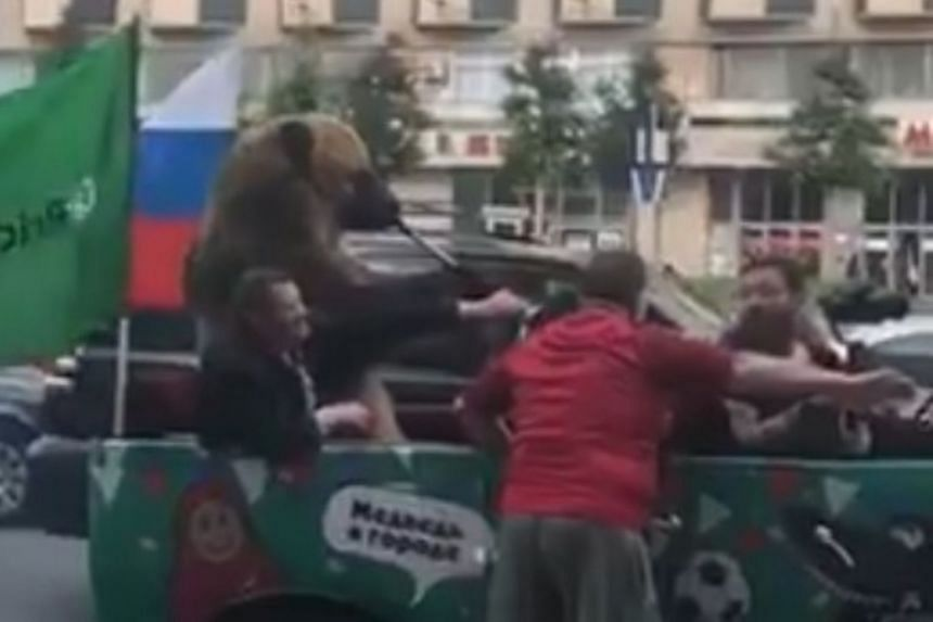A bear a blowing a vuvuzela while sitting upright in a car attracted the attention of several onlookers in Moscow. Passers-by were taking photos and videos of the trained animal.