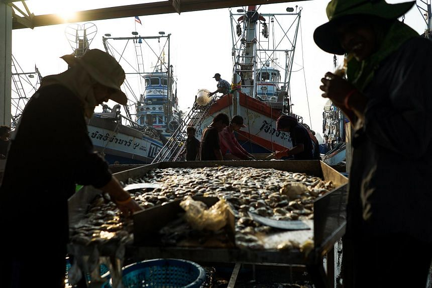 File photo showing migrant workers sorting fish and seafood unloaded from a ship at a port in Samut Sakhon province, Thailand, on Jan 22, 2018.