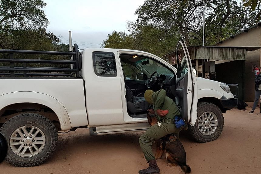 Cisco and Dimension Data plan to expand their Connected Conservation tech solution to protect elephants and rhinos in other reserves in Zambia, Mozambique and Kenya. The reserve is protected by 72km of electric fencing and thermal cameras to spot int