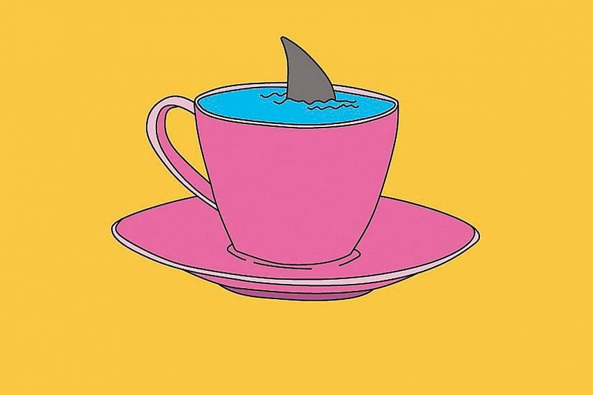 Shark swimming in a teacup