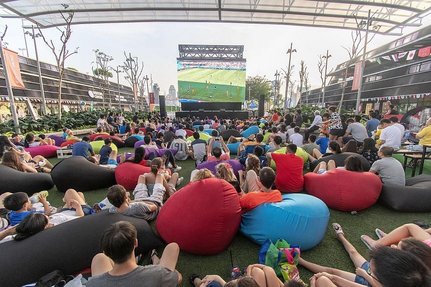 Fans enjoying themselves at last Saturday's Sports Hub screening of the France-Australia World Cup match.