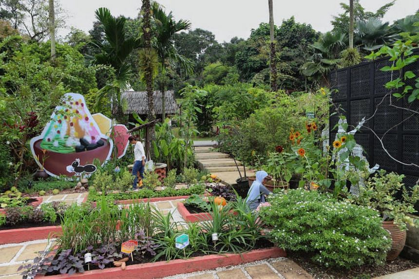 Gardeners tending to the Balik Kampung garden, one of the five garden displays at the Community Garden Festival, on Nov 2, 2017. The festival is the work of more than 100 gardeners under NParks' Community In Bloom (CIB) initiative.