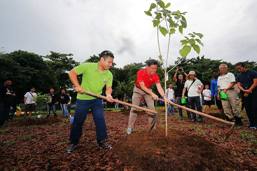 Trade and Industry Minister Chan Chun Sing (right) and Minister for Social and Family Development Desmond Lee planting a beach cordia tree at Ubin Living Lab on June 24, 2018.