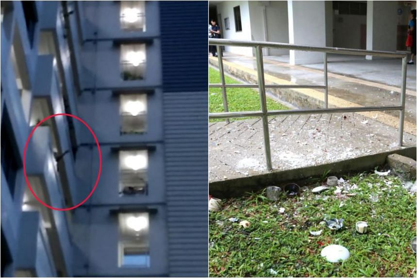 An eyewitness, a 32-year-old domestic worker, said she saw the man throwing plastic containers and other glass items off the common corridor on the ninth storey of Block 64 Marine Drive on June 25, 2018.