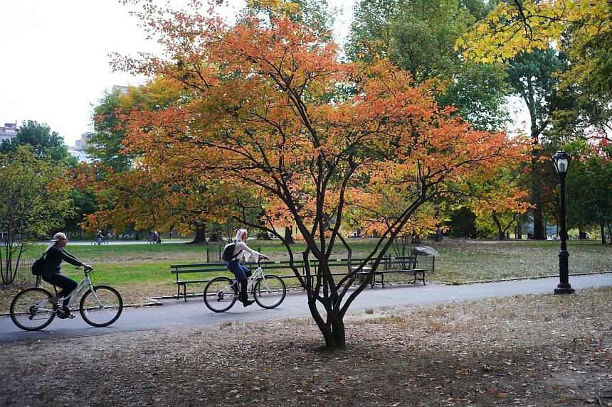 Women ride their bikes past a colourful tree in Central Park in New York City. The iconic park officially goes car-free on June 27, 2018.