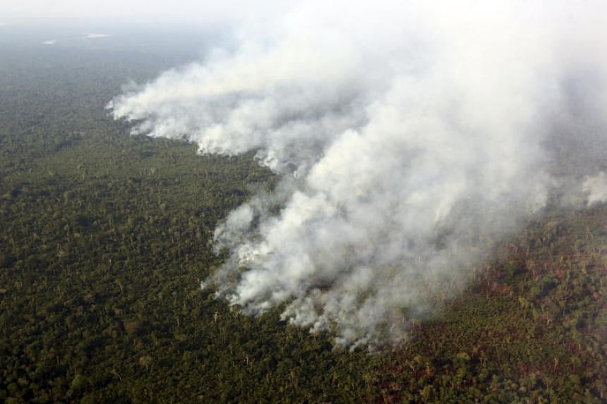 Smoke billows during a fire in an area of the Amazon rainforest at the Kuikuro territory in the Xingu National Park, Mato Grosso, Brazil, on Oct 4, 2015.