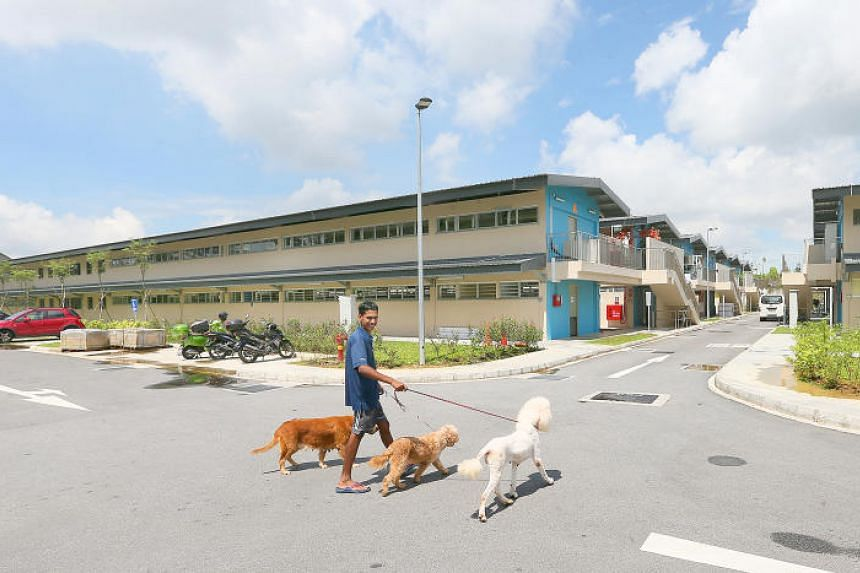 More than 20 animal shelters are moving from Pasir Ris Farmway to The Animal Lodge in Sungei Tengah to make way for industrial development.