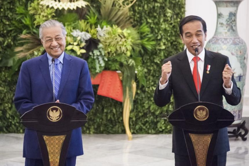 Malaysian Prime Minister Mahathir Mohamad (left) and Indonesian President Joko Widodo at a press conference after their meeting at the presidential palace in Bogor on June 29, 2018.