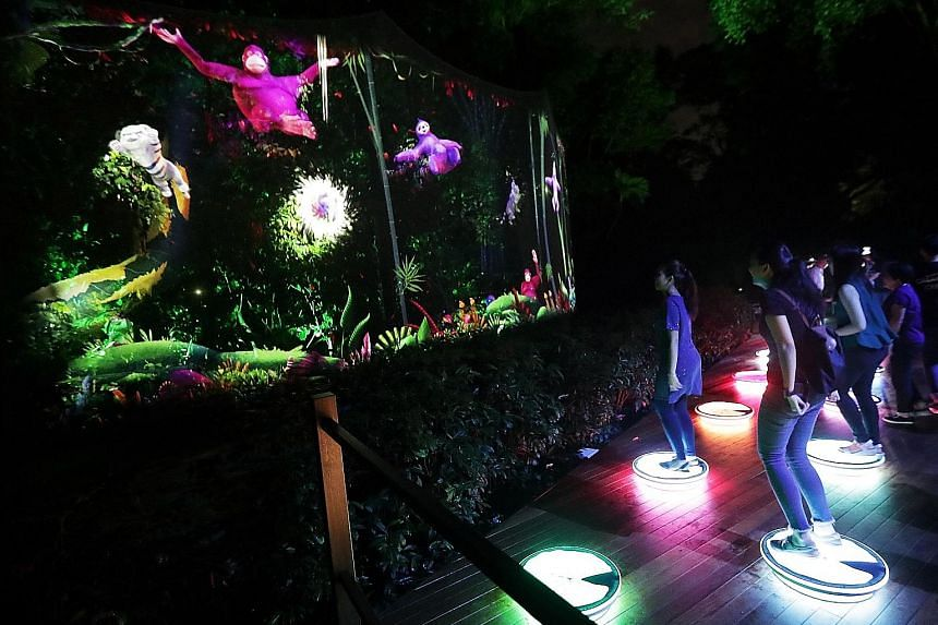 The zoo will launch its Rainforest Lumina attraction tomorrow - a trail featuring interactive light and sound installations showcasing animals like orangutans.