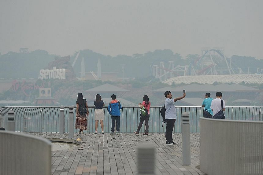 Singapore during the haze crisis in 2013. Ms Zhang Wen, executive director of People's Movement to Stop Haze, says haze in the region highlights the transboundary nature of climate change.