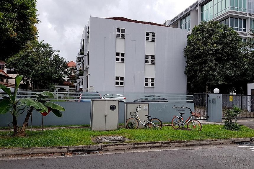 Owners at the 12-unit Jansen Mansion near Kovan MRT station want $22 million. The 1,541.5 sq m plot has 857 years left on its 999-year lease, with a plot ratio of 1.4 and a height limit of up to five storeys. Huttons Asia said the site can be redevel