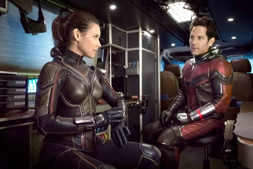 Paul Rudd is Ant-Man, a superhero who is trying to be a good parent, and Evangeline Lilly is his partner, The Wasp.