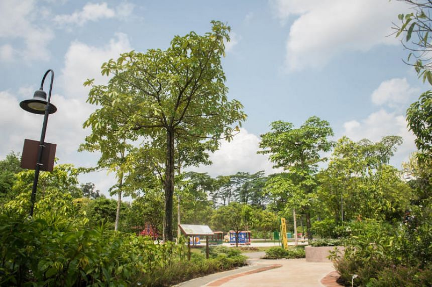 The new Therapeutic Garden at Choa Chu Kang Park, the first in the growing network of therapeutic gardens that will serve the community living in the west of Singapore.